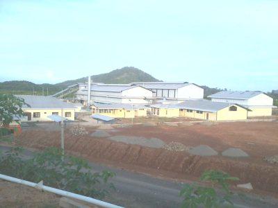 pabrik-kelapa-sawit-mandailing